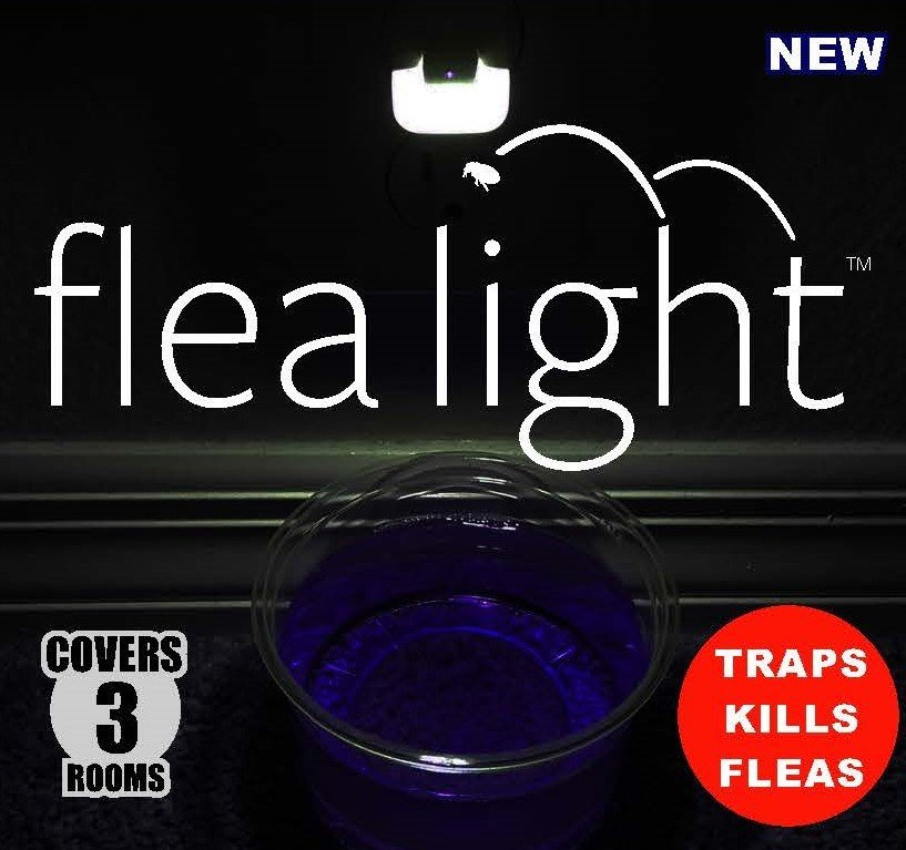 Flea Light 3-Room Kit, Non-Toxic Trap Fleas Gnats Bugs Wasps Flying Ants 6285868503786