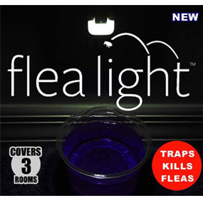 Flea Light 3-Room Kit, Non-Toxic Trap Fleas Gnats Bugs Wasps Flying Ants