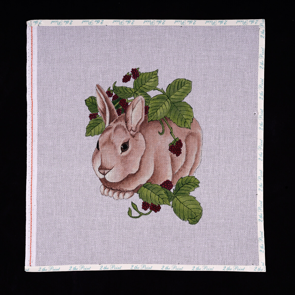 Sunrunner, Bunny with Rasberries-      Discontinued