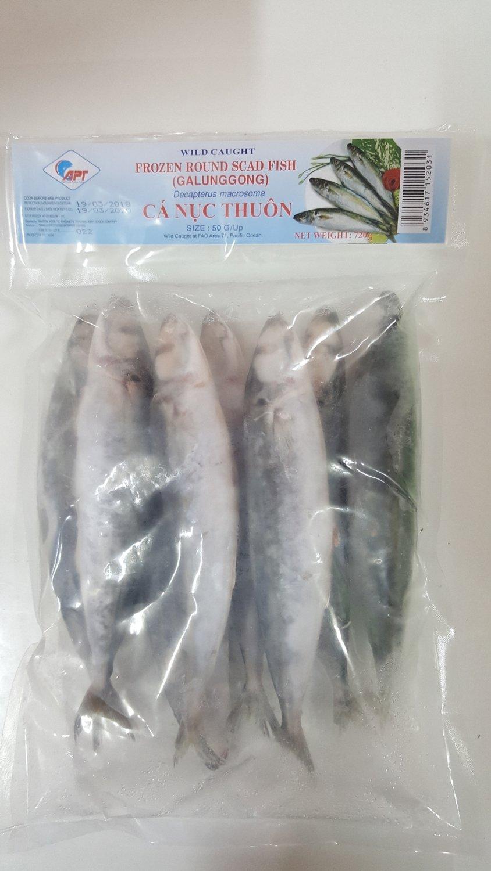 Ikan Layang (Galunggong)