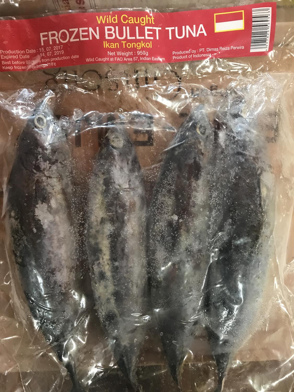 Ikan Tongkol/  Tuna (Tongkol) Indonesia