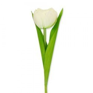 Witte kunst tulp - Huisvaasje