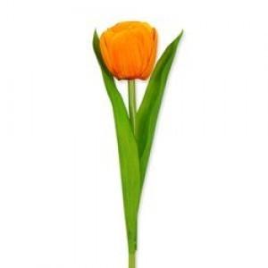 Oranje kunst tulp - Huisvaasje