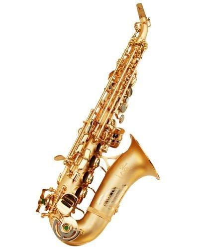Oleg Maestro Curved Soprano Saxophone 505