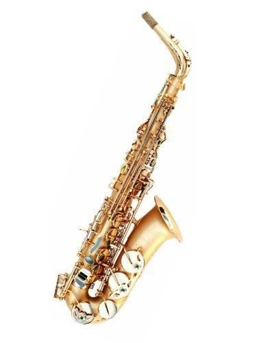 Oleg Maestro Alto Saxophone 501