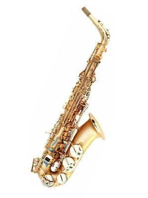 Oleg Maestro Alto Saxophone
