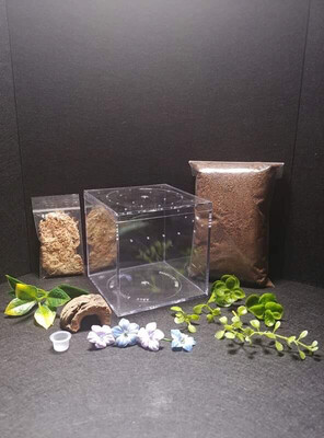 Jamber's Critters Tall Terrestrial Enclosure Kit