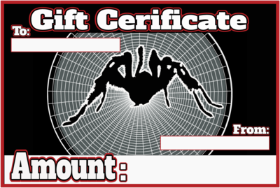 Palp Friction Tarantulas Gift Certificate - READ DESCRIPTION BEFORE BUYING