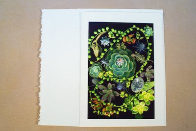 Succulent Feast