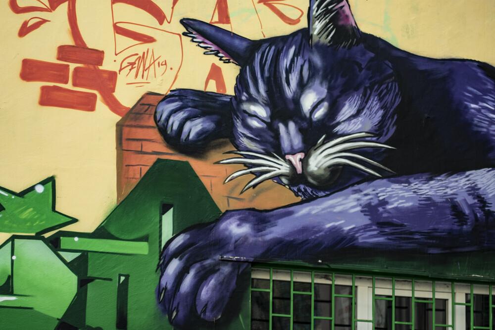 Sofia Graffiti and Street Art Tour | Price from