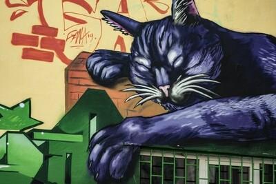 Sofia Graffiti and Street Art Tour   Price from