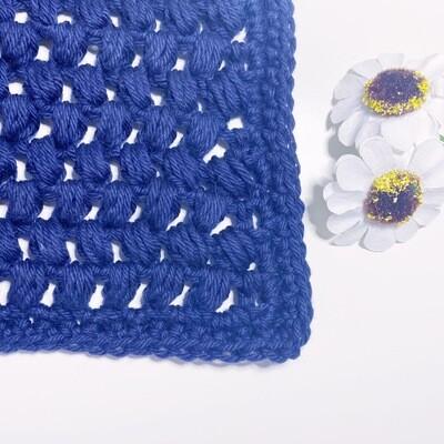 Washcloth Series - 04 Blueberry