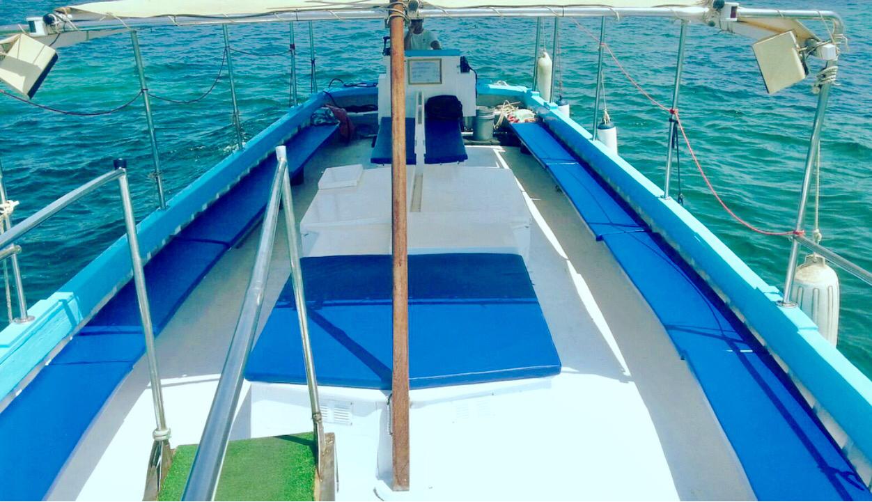 Spacious Ibiza boat charter £79pp