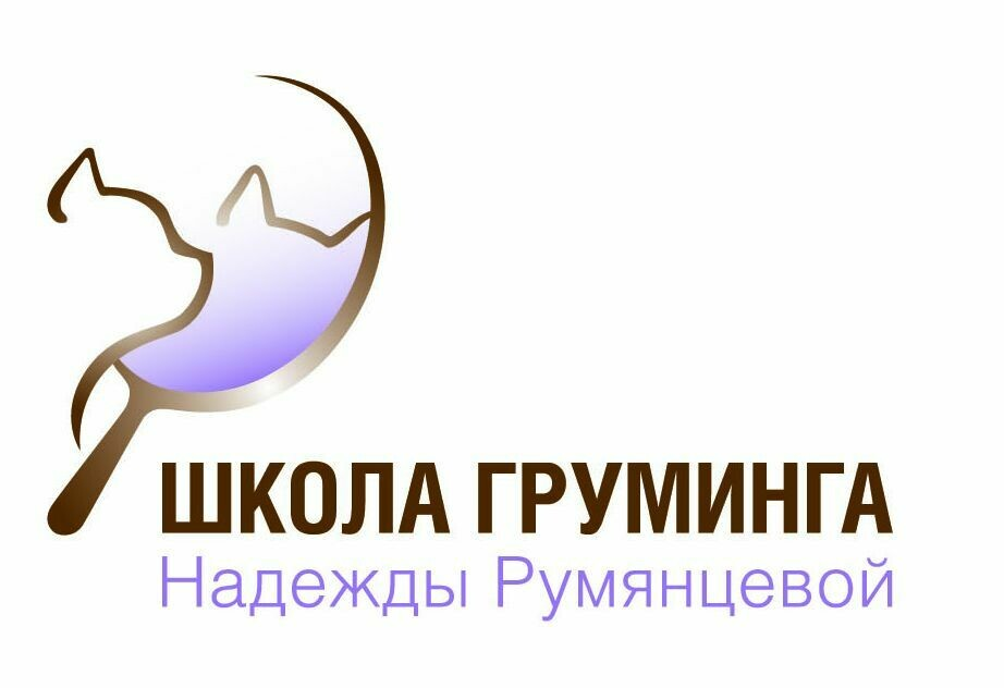 "экспресс курс по грумингу кошек ""Интенсив"" 17-21 февраля 2020 предоплата 50%"