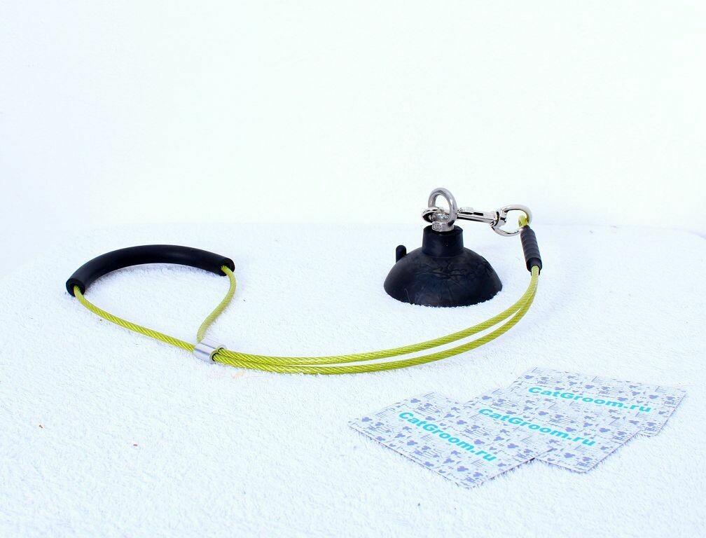 Присоска-привязь для купания с поводком в комплекте