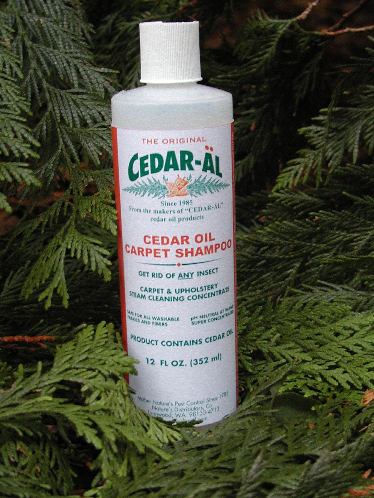 CEDAR-AL Cedar Carpet Shampoo 3