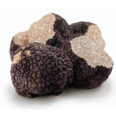 Трюфель черный летний (Tuber Aesivum Vitt.), 1 грамм (минимум для заказа: 20 грамм)