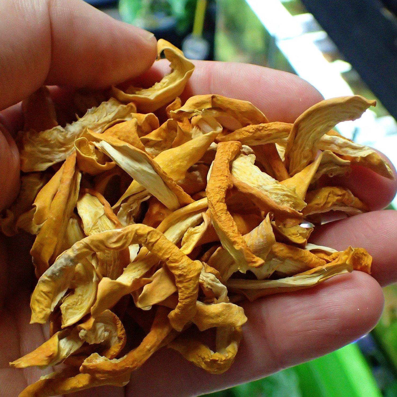 100% Organic Hokkaido Chips 10g