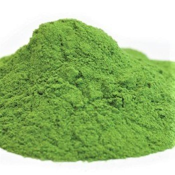 100% Organic Spinach Powder - 40g