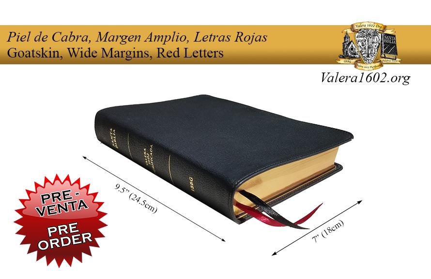 Margen Amplio (Cabra) / Wide Margin (Goatskin) 10Valera