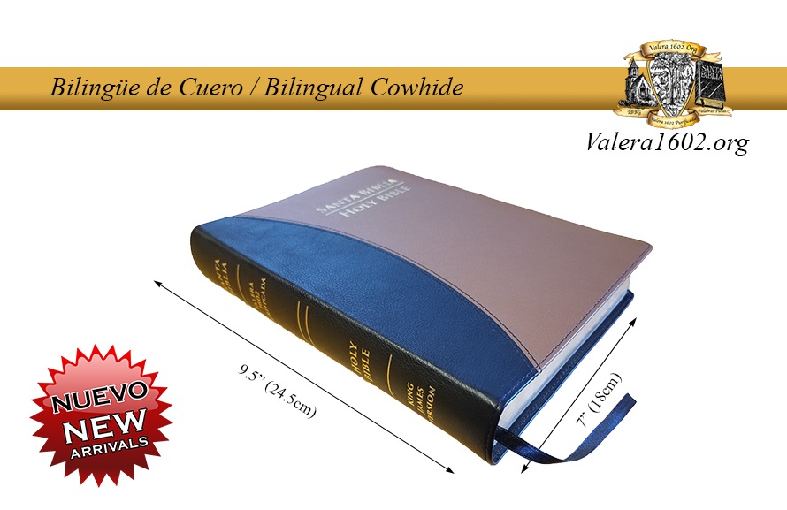 Bilingüe Cuero / Bilingual Cowhide 01Valera