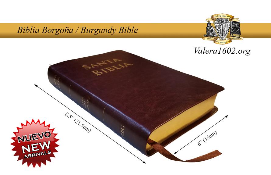 Biblia Borgoña / Burgundy Bible 13Valera
