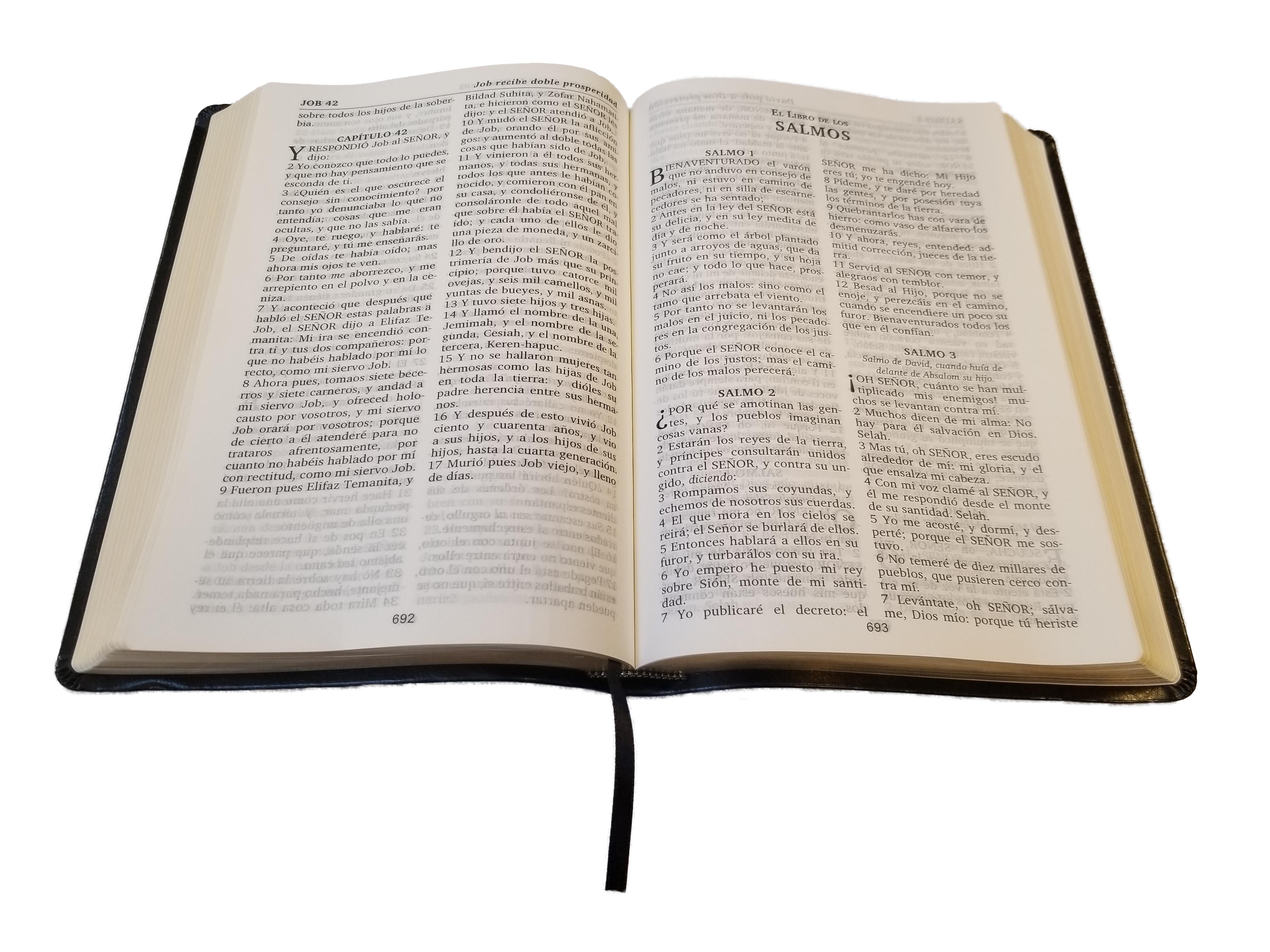 Biblia Borgoña / Burgundy Bible