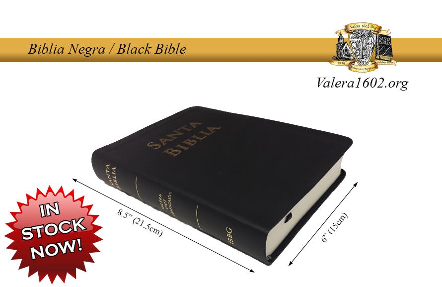 Biblia Vinilo / Vinyl Bible 00000