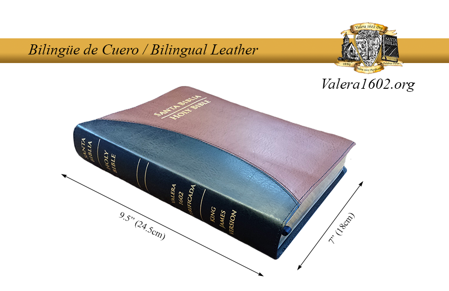 Bilingüe Cuero / Bilingual Leather 01Valera