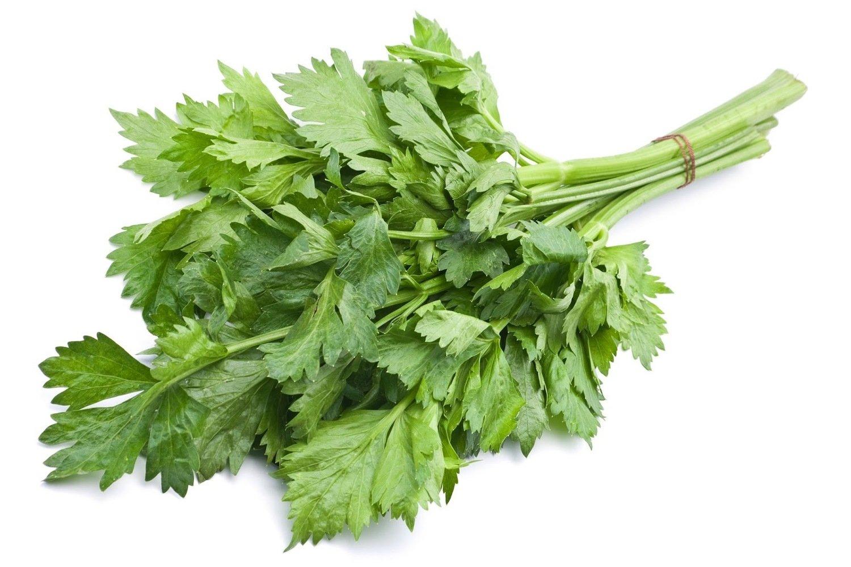 Soup Celery 150g