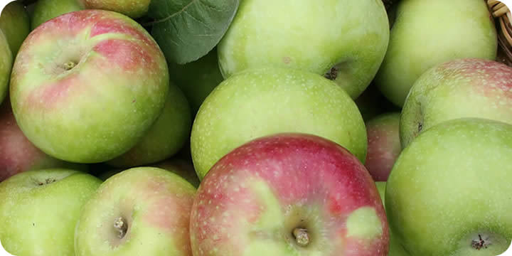 Armagh Bramley Cooking Apples 1kg