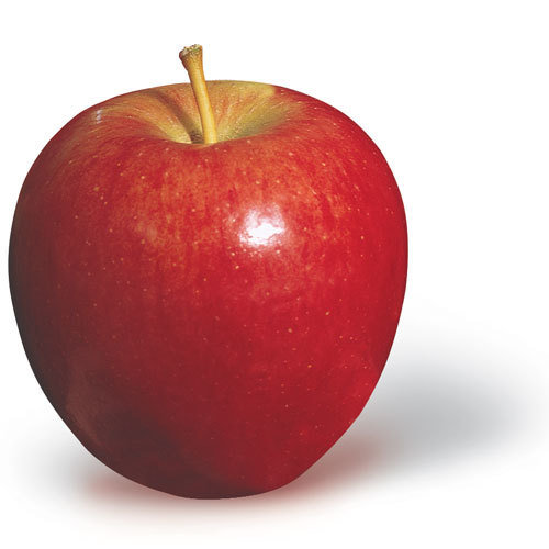 Apple (Red Delicious x 1)