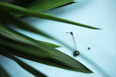 Асимметричные серьги с жемчугом