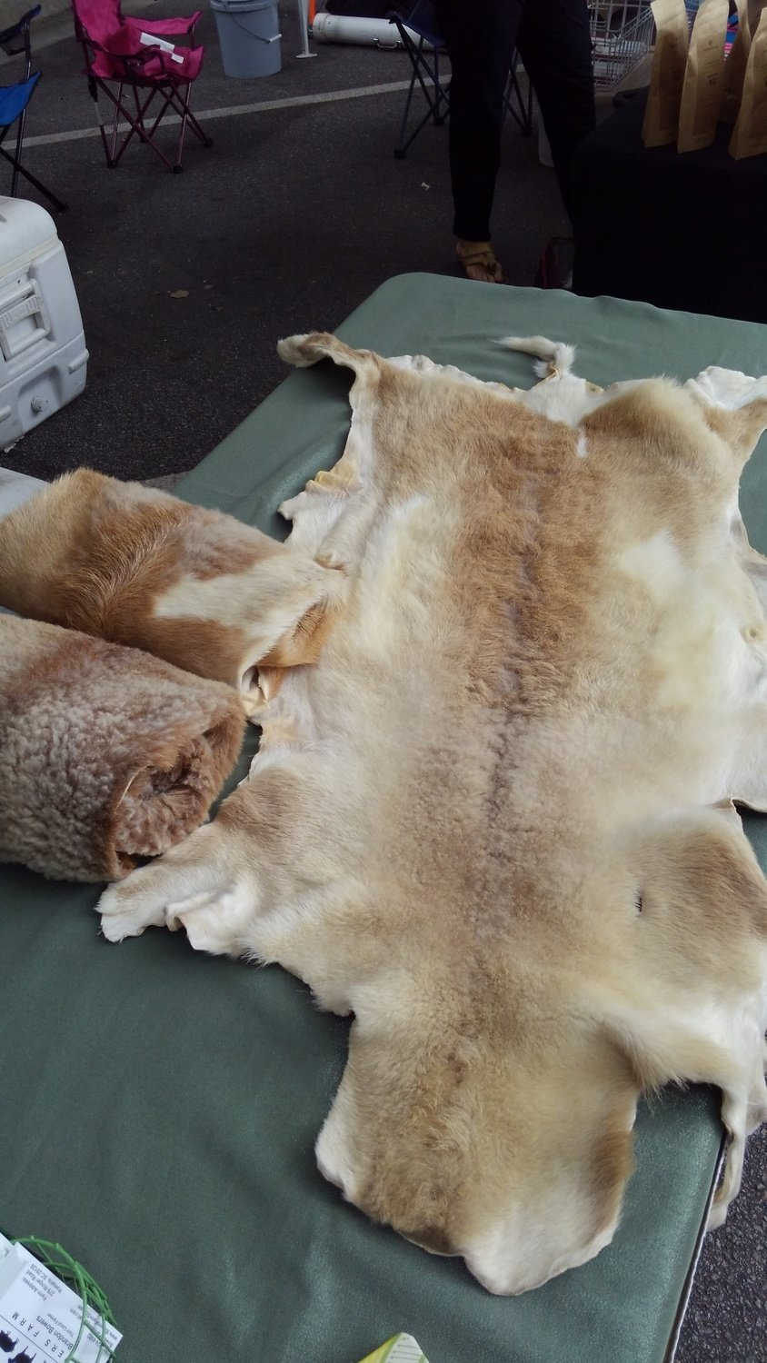 Sheep Pelts