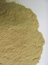 Lion's Mane (Cultivated) Powder P-LIONMcul-M