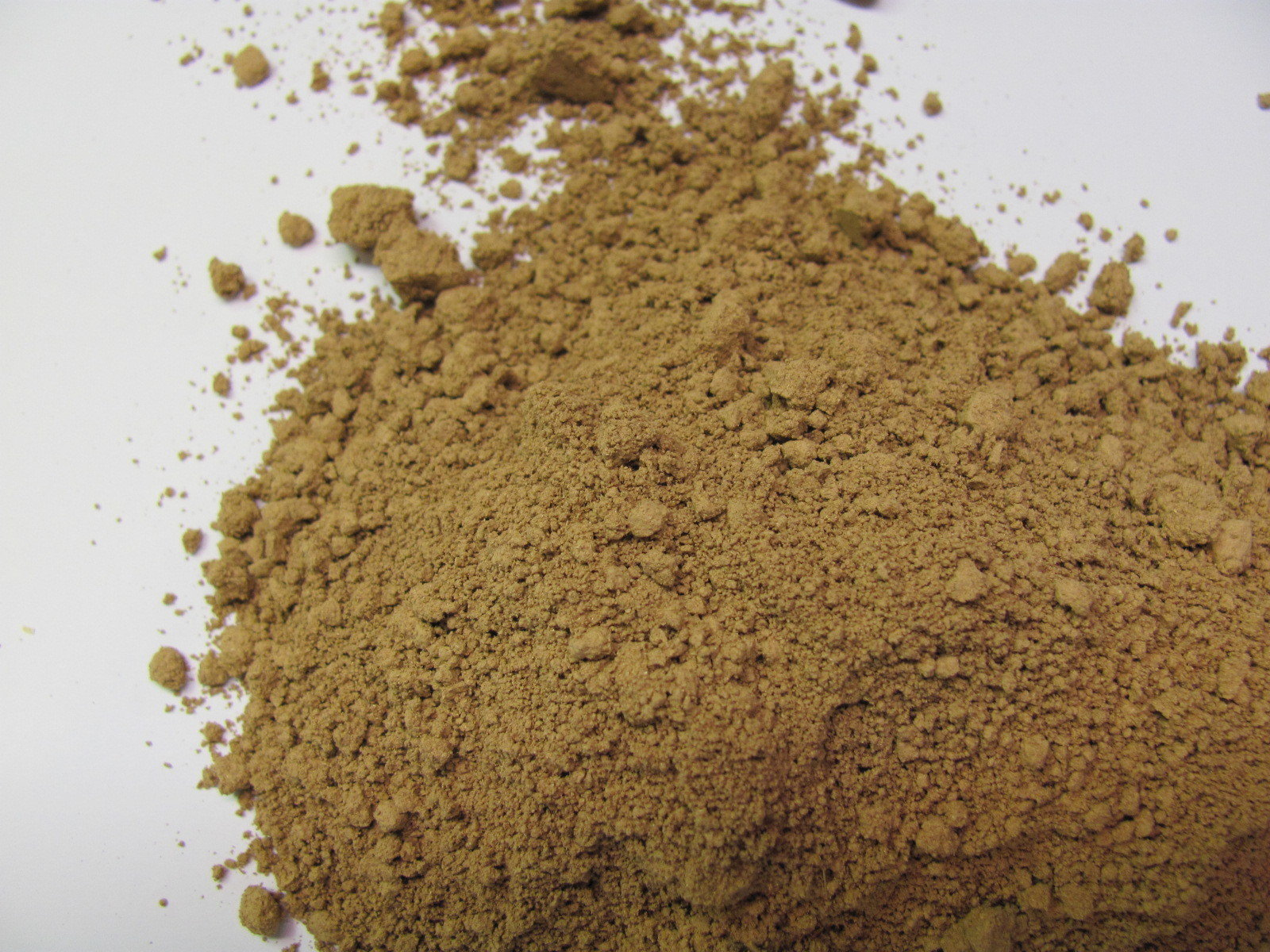 Reishi Mushroom (Cultivated) Powder P-REISH-M