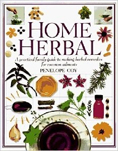Home Herbal B-HH-Ody