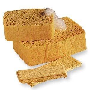 PopUp Sponge - 2 Pack WBN-PUpSponge2