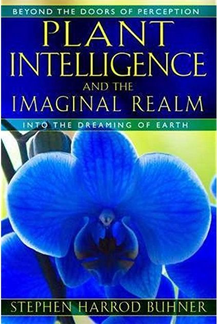 Plant Intelligence and the Imaginal Realm B-PI-Buhner