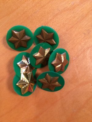 Vintage/used Brownie star pin and disc