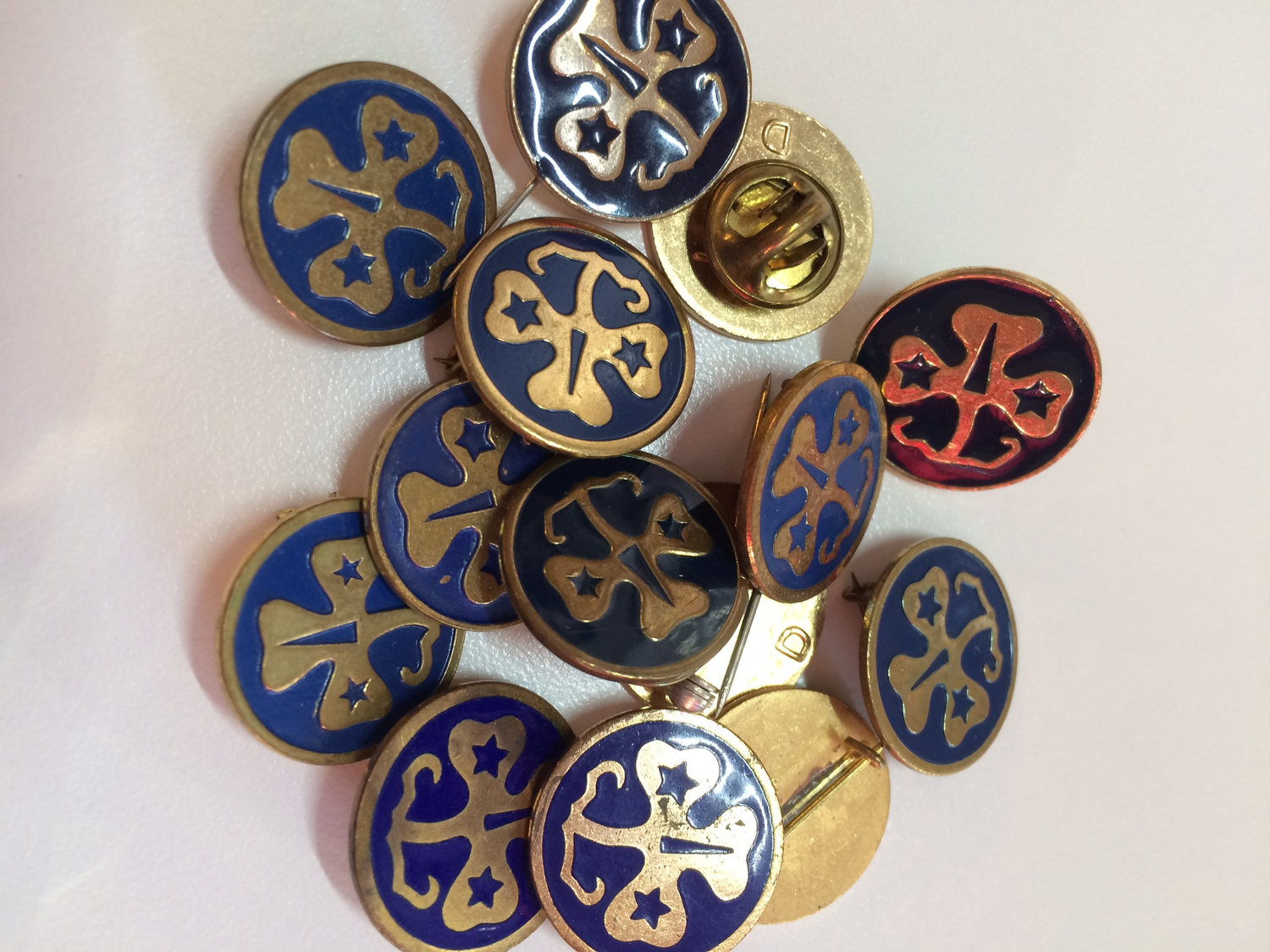 WAGGGS vintage pin