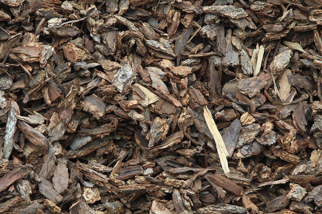 Bark Chips Medium