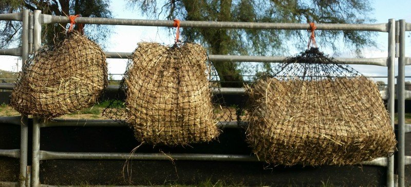 Small, Medium and Large GutzBusta Hay Net