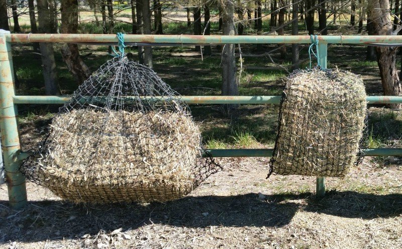 Large and Medium GutzBusta Slow Feed Hay Net