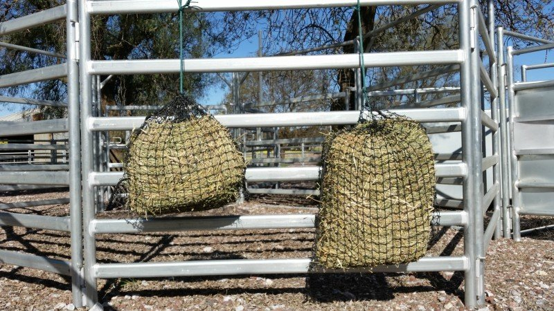 4cm Small and Medium GutzBusta Slow Feed Hay Net