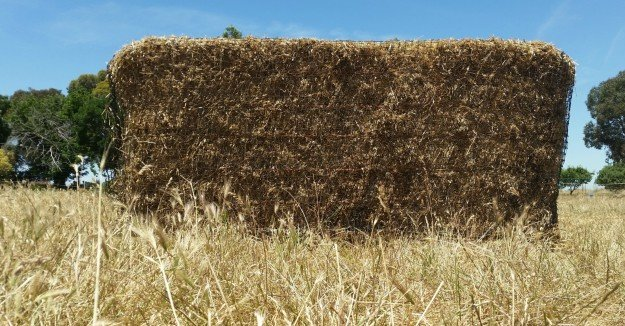 GutzBusta Slow Feed Hay Net for Large Square Export Bales