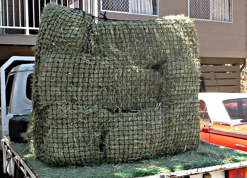 Using small bales in a 4cm 48ply GutzBusta Slow Feed Hay Net