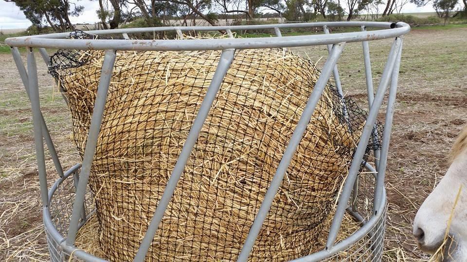 4cm GutzBusta Round Bale Hay Net in a hay ring feeder