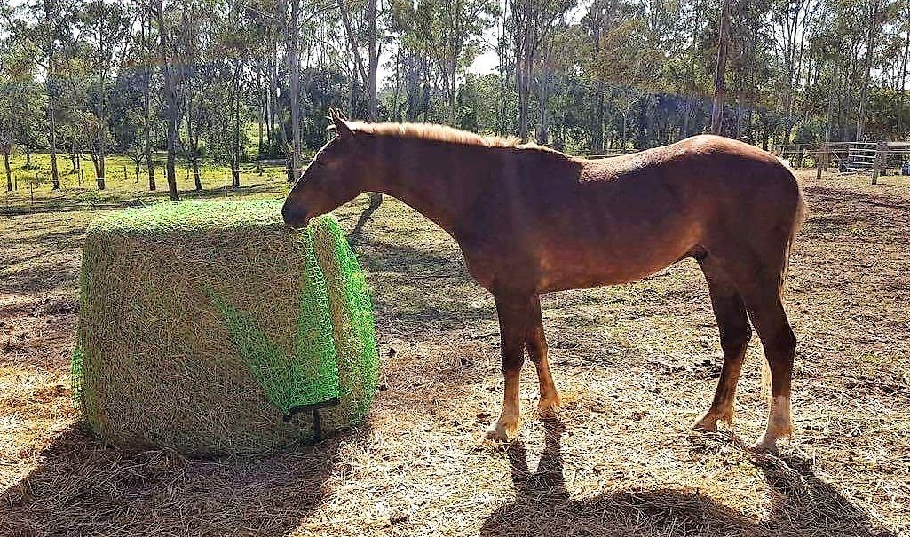 5x4 4cm GutzBusta Round Bale Hay Net in 60ply