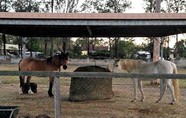 4cm GutzBusta Round Bale Hay Net under Cover 48ply